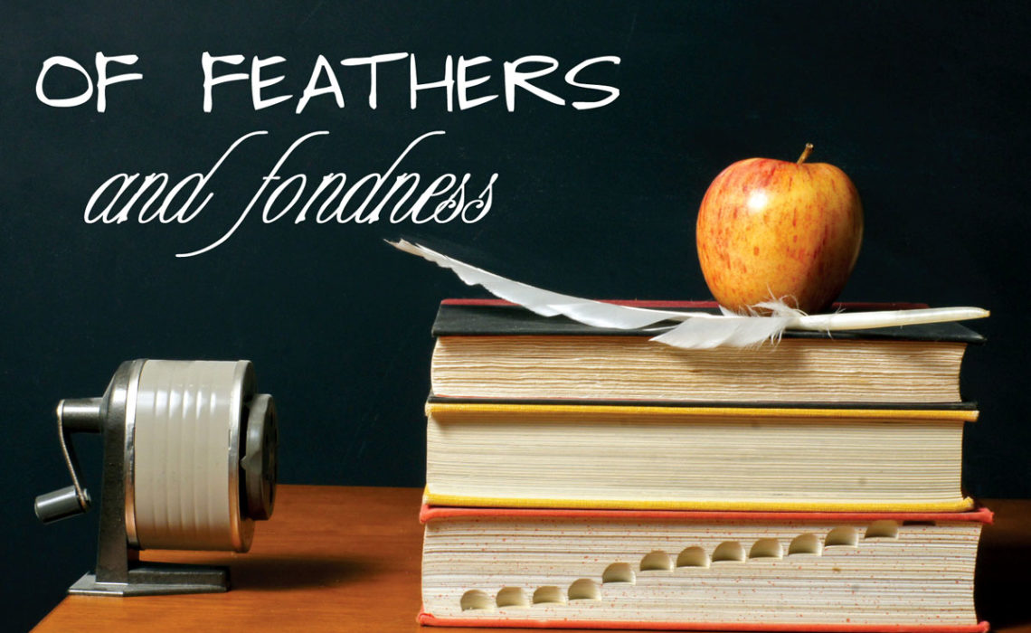 Of Feathers and Fondness: A Love Story
