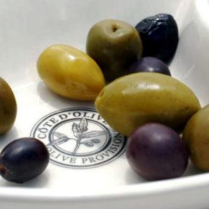 olive basics