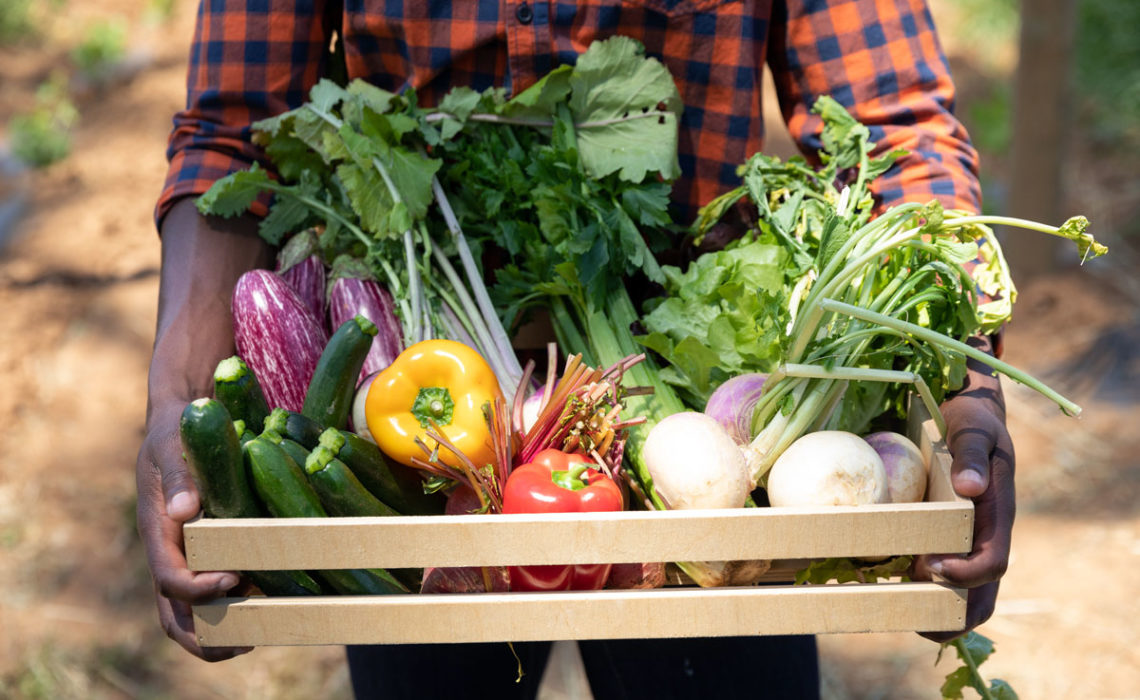 Healthy Eating:  Finding Fresh Produce