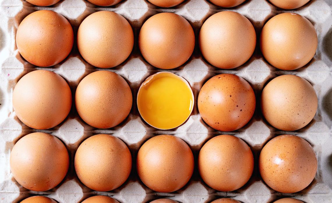 Know Your Food:  Egg Basics