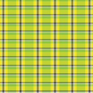 plaid facts