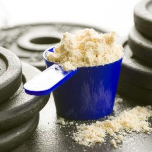 protein powder basics